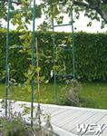 Allée de jardin et terrasse bois composite